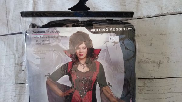 Beautiful Dreamgirl Costume , size 1x / 2X ( excellent condition )
