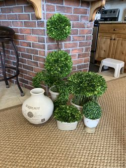 Pottery and 5 boxwood topiary plants for Sale in Orem,  UT