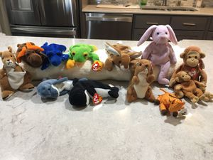 Beanie Babies for Sale in St. Louis, MO
