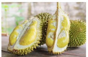 Durian -1kg =$7 for Sale in Brooklyn, NY