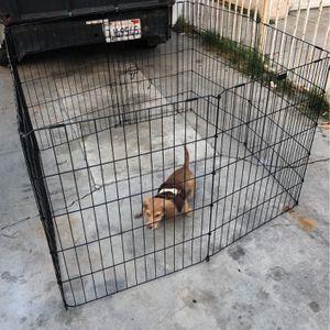 Ventas Jaulas De Metal Para Sus Mascotas for Sale in Long Beach, CA