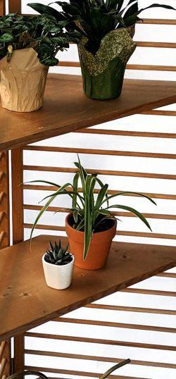 Brown Corner Shelves | Plant Shelf | Solid Wood Portable Shelves for Sale in Fairfax,  VA