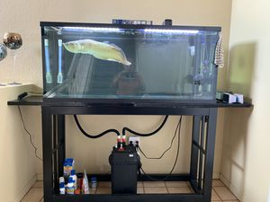Aquarium Tank with Lid, Metal Stand & Fluval canister. 55 gallon for Sale in Pittsburg, CA