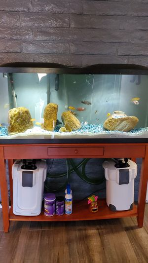 Fish tank for sale for Sale in Bakersfield, CA