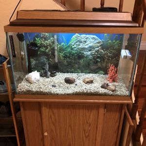 Fish Tank w/ Cabinet Stand for Sale in San Jose, CA