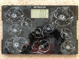 Scale for Sale in Richmond Hill, GA