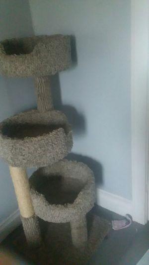 CAT TREE for Sale in Unionville, IA