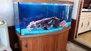 72 Gallon Bow Front Fish Tank, all included for Sale in Cleveland, OH