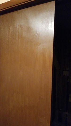 Idoor panel for Sale in Kent, WA