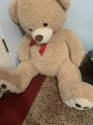 Bear for Sale in Tucson, AZ