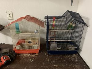 Love birds and parakeet with cage both for 125 for Sale in Hesperia, CA