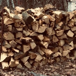 Seasoned Hedge Firewood for Sale in Independence, KS