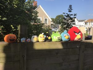 Angry birds for Sale in Everett, MA