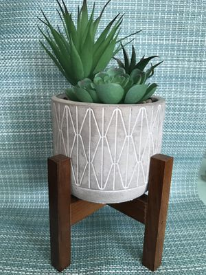 "7"" artificial succulent plant on wooden stand for Sale in Madera, CA"