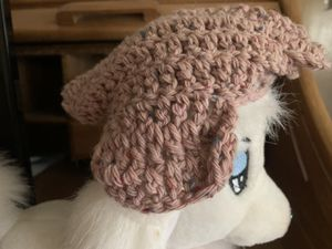 Hat for small pet for Sale in Modesto, CA