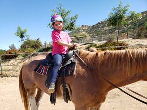 Horseback riding lessons for Sale in Brea, CA