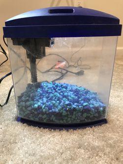 Aqueon Mini Fish Tank for Sale in Fort Mill,  SC