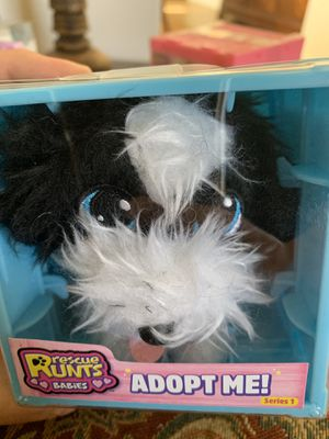 Border Collie Rescue Runts Babies Dog Adoption Toy for Sale in Rio Rancho, NM
