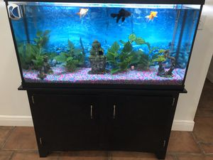 Fish tank 60' gallons with stand and filter for Sale in Miami, FL
