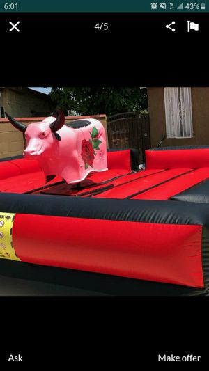Bulls for Sale in Fontana, CA