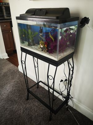 10 galon Aquarium with everything you need. for Sale in Edgewater Park, NJ