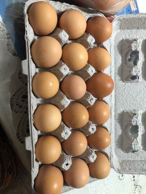 Organic eggs for Sale in Stockton, CA