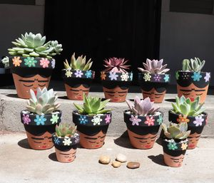 Pots and plants for Sale in Long Beach, CA
