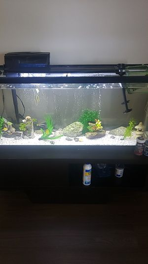 Fish tank 55 gallon with everything 275 for Sale in Kissimmee, FL