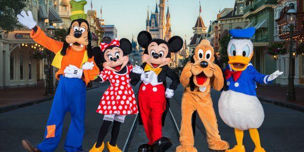 Walt Disney World One Day One Park Tickets