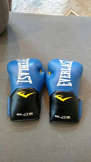 Everlast Boxing Gloves for Sale in Grand Haven, MI