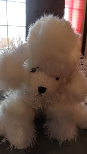 Webkinz plush white poodle for Sale in El Paso, TX