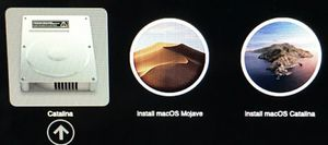 Mac OS USB Boot Flash 2 in 1 (Mojave and Catalina) for Sale in Baltimore, MD