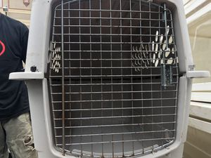 Large an small dog kennel for Sale in Philadelphia, PA