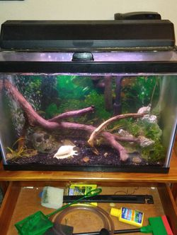 20gal Fish Tank And Accessories (Stand Not Included) for Sale in Milwaukie,  OR