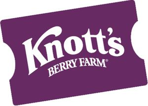 Knotts berry farm tickets (2) for Sale in Anaheim, CA