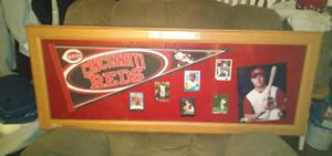 Large framed cinn reds pennant and cards for Sale in New Albany, IN