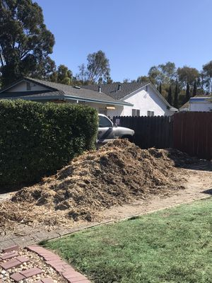 Free wood chips for Sale in Pacifica, CA