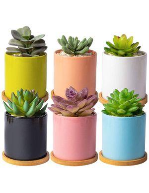 Succulent plant pots for Sale in Houston, TX