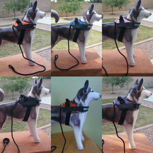 2 Piece, Harness with Leash for Sale in Tolleson, AZ