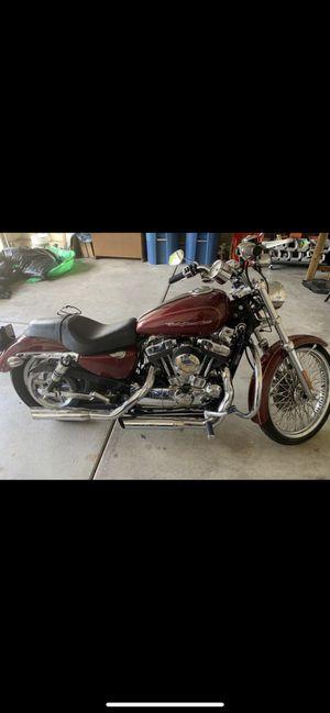 2004 Harley XL1200C for Sale in Aurora, IL