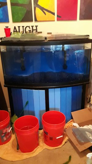 72 gallon Bow Front Aquarium and everything you need. for Sale in Pflugerville, TX