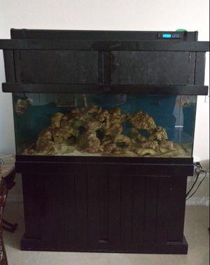 Salt Fish tank for Sale in Kissimmee, FL