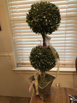 Decorative Topiary for Sale in Dallas,  TX