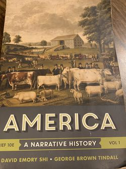 America: A Narrative History Textbook for Sale in Nampa,  ID