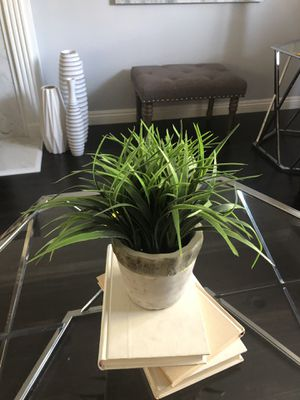 Artificial plants - $15 for Sale in Altadena, CA