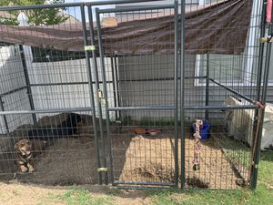Large Dog Kennel for Sale in Winterville, NC