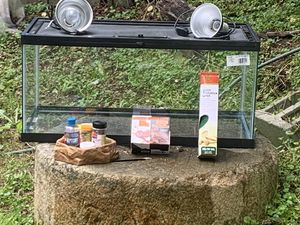 50 gallon tank and accessories for Sale in Mars Hill, NC