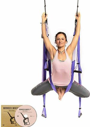 YOGABODY Yoga Trapeze [official] - Yoga Swing/Sling/Inversion Tool, Purple with Free DVD for Sale in City of Industry, CA