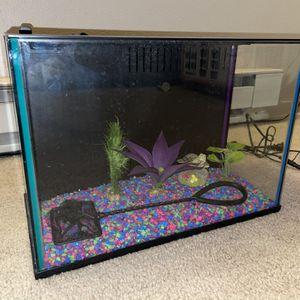 5-gal Fish Tank for Sale in Seattle, WA