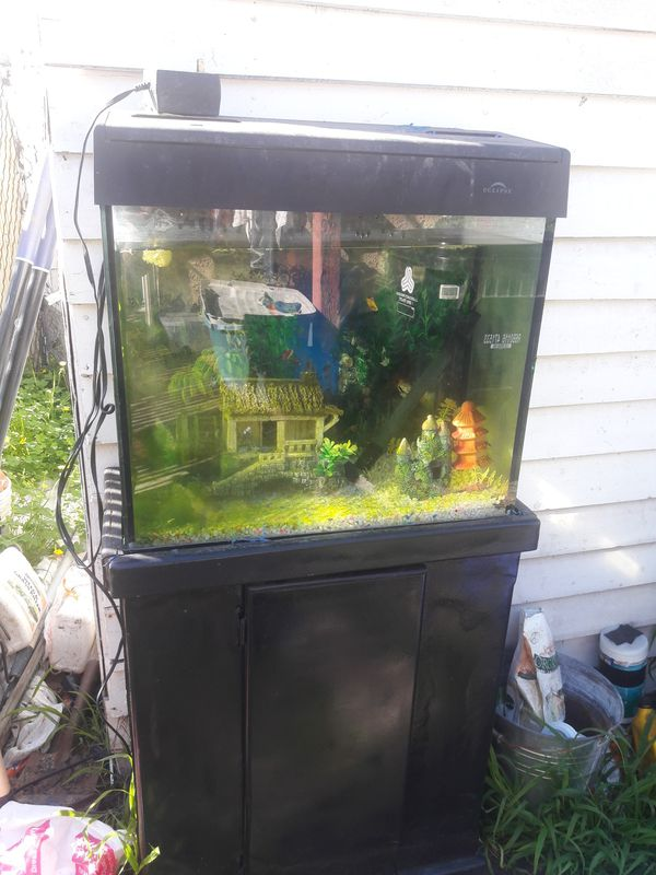 Aquarium 28 gallon with running filter and florescent lights selling for $80